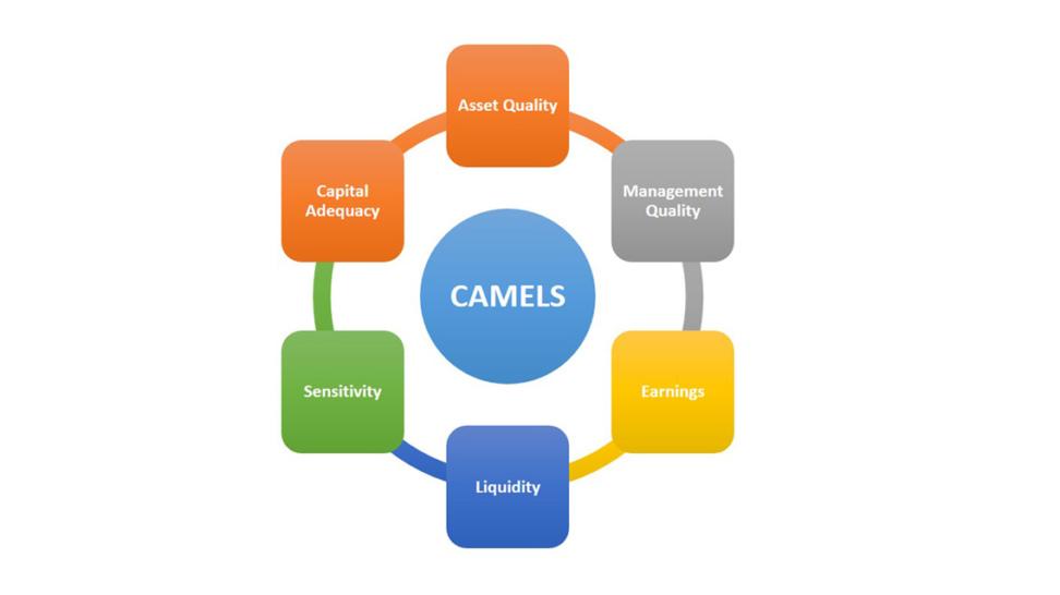 CAMELS Rating