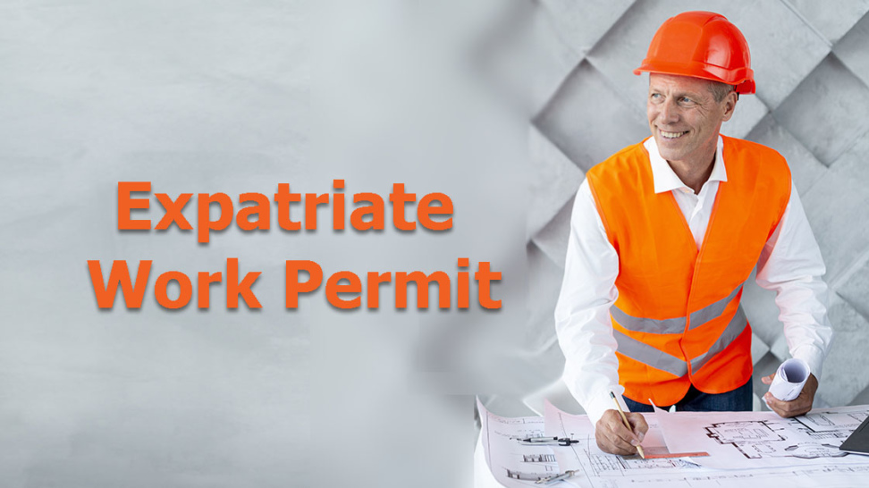 Foreign Employees Work Permit