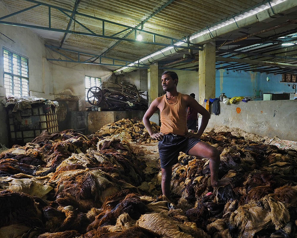 Tannery Labour Minimum Salary